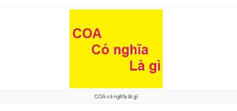 [Khái niệm] COA là gì? Giải mã những thắc mắc về COA cho người chưa biết – 2021