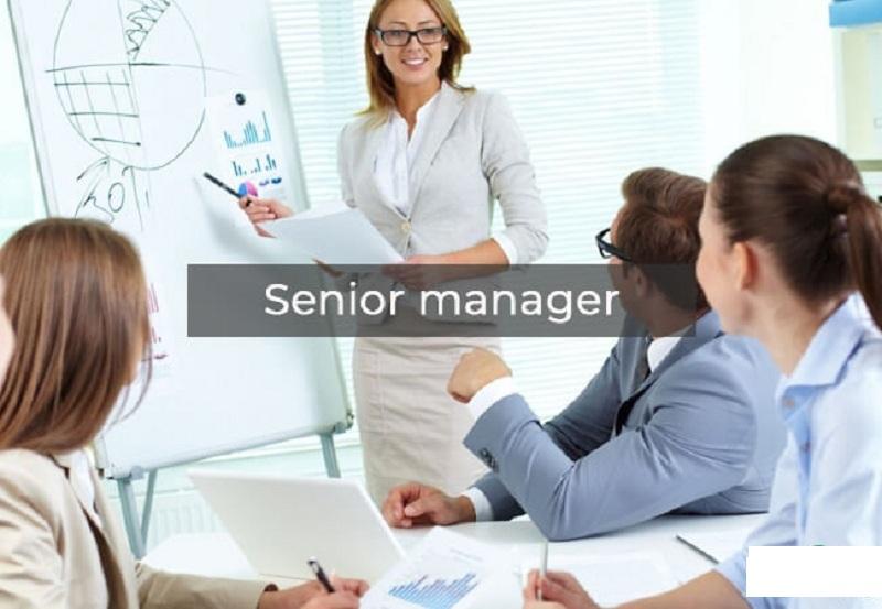 Khái niệm Senior Manager là gì?